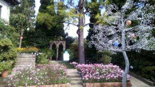 箱根観光 ガラスの森