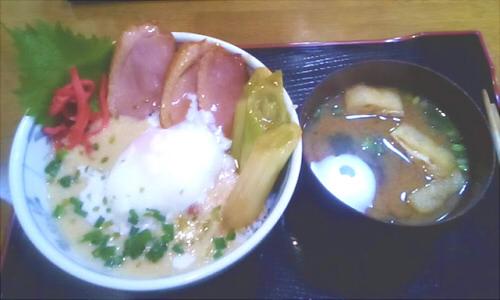 箱根観光 かも丼