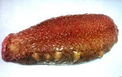 ナマコ 食用 種類