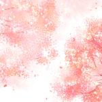 桜 クローン 起源